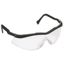 3M 12109 Clear Safety...